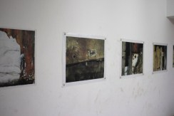 Ginette Daleu - Photography