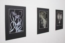 Odun Orimolade – Painting